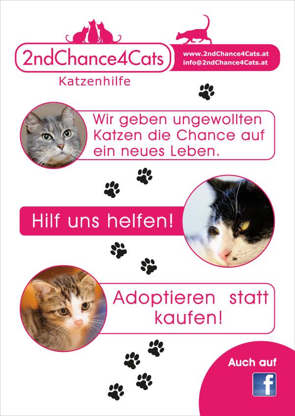 Winterlik Portfolio 2C4C Plakat